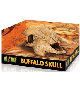 EXO TERRA Buffalo Skull czaszka bawoła
