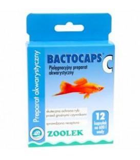 Zoolek Bactocaps C preparat anybakteryjny