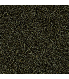 TROPICAL Spirulina Super Forte 36% granulat 100g uzupełnienie