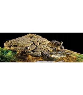 EXO TERRA Wyspa S dla żółwi (16,6x12,4x3,3cm)